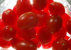 упаковывая томаты стоковые фотографии rf