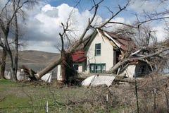 Упаденное дерево на сельском доме Стоковые Фотографии RF