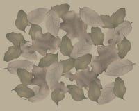 упаденные листья Иллюстрация вектора