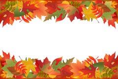упаденный вектор листьев Стоковые Фотографии RF