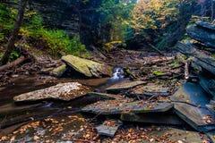 Упадите на малый поток около Ithaca, NY Стоковое фото RF