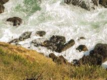 Уплотнения на Malibu, изумруде и открытом море в довольно пляже рая окруженном скалами Бухта Dume, Malibu, Калифорния, CA Стоковые Фотографии RF