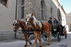 управляемые экипажом туристы salzburg лошади стоковое фото rf