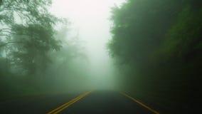 Управлять автомобилем в густом тумане погодное условие плохой погоды с нул visability Взгляд перспективы от кабины акции видеоматериалы