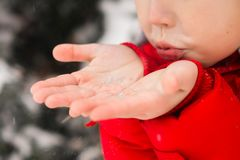 управлять зимой розвальней потехи Ребенок дует снег от ладоней стоковые фото