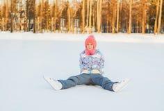 управлять зимой розвальней потехи skating стоковые фотографии rf