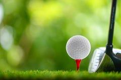 управляйте гольфом Стоковые Изображения RF
