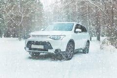 управлять зимой катание -дороги на дороге пущи зимы снежной Стоковые Фото