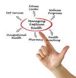 Управляя здоровье работника Стоковое Изображение RF