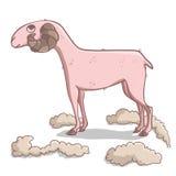 Уравновешенные овцы иллюстрация штока