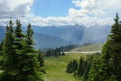 Ураган Ридж в горах олимпийского национального парка, штат Вашингтон стоковые изображения rf