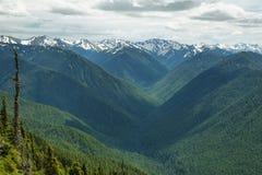 Ураган Ридж олимпийского национального парка, WA, США стоковые изображения rf