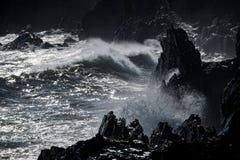 Ураган цунами тропический на море стоковая фотография