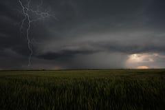 Ураган Стоковое Фото