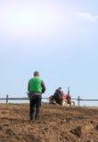 Урожаи на поле Стоковое фото RF