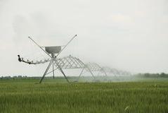 Урожаи системы опылительного орошения Стоковые Изображения RF