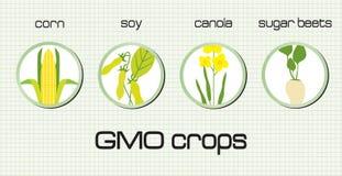 Урожаи GMO иллюстрация штока