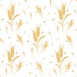 Урожай зерна пшеницы картины Стоковое Изображение