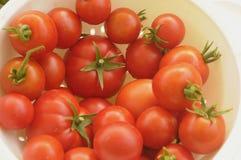 Урожай томата стоковая фотография rf
