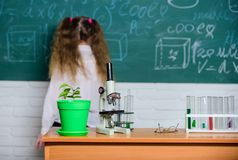 Урок биологии школы Биология исследования ребенк с оборудованием в школе День знания Концепция биологии Микроскоп и тест стоковые изображения