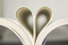 урок влюбленности Стоковая Фотография RF