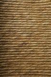 усадите текстуру сторновки Стоковые Фотографии RF
