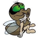 усаживание мухы Стоковые Фотографии RF