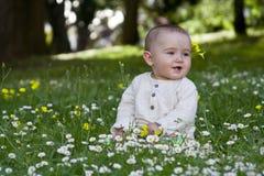 усаживание травы младенца Стоковая Фотография