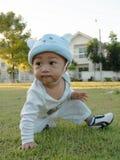 усаживание травы младенца Стоковое Фото