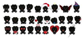 Усаживание Affenpinscher собаки Большой комплект 27 различных маленьких собак бесплатная иллюстрация