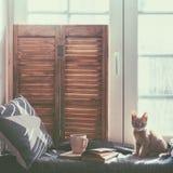 усадите окно Стоковые Фотографии RF