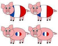 Усмехаться и счастливая свинья поднятые во Франции иллюстрация штока
