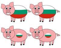 Усмехаться и счастливая свинья поднятые в Болгарии иллюстрация вектора