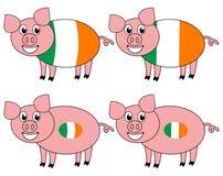 Усмехаться и счастливая свинья поднятые в Ирландии иллюстрация вектора