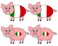 Усмехаться и счастливая свинья поднятые в Италии иллюстрация штока