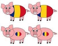 Усмехаться и счастливая свинья поднятые в Румынии бесплатная иллюстрация