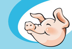 усмехаться свиньи Стоковое фото RF
