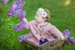 Усмехаясь венок цветка ребёнка 1-2 годовалый нося, держа букет сирени outdoors смотреть камеру время весны лета стоковое фото rf