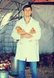Усмехаясь ветеринар человека в белом пальто с цыплятами Стоковое Фото
