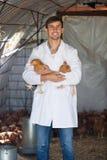 Усмехаясь ветеринар человека в белом пальто с цыплятами Стоковая Фотография RF