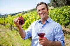 Усмехаясь виноторгоец держа виноградины и бокал вина Стоковые Изображения RF