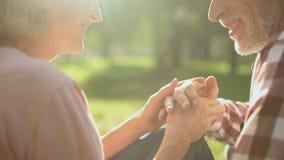 Усмехаясь выбытые пары ослабляя в парке, держа руки и говоря о влюбленности акции видеоматериалы