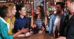 Усмехаясь группа в составе друзья взаимодействуя пока имеющ бутылку пива видеоматериал
