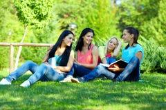4 усмехаясь девушки студента изучая в зеленом парке Стоковая Фотография RF