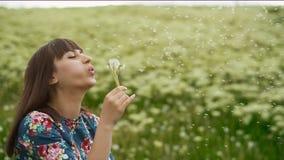Усмехаясь женщина дуя на одуванчике сток-видео