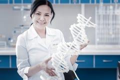 Усмехаясь зрелая дама рассматривая трехмерное дна моделирует в лаборатории Стоковые Изображения RF