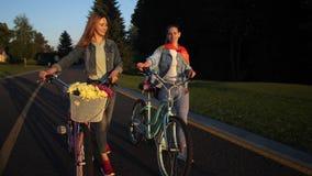 Усмехаясь идти пар lgbt неторопливый на путь велосипеда видеоматериал