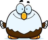 Усмехаясь маленький белоголовый орлан Стоковое Фото