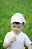 Усмехаясь мальчик в лужке одуванчика Стоковое Фото