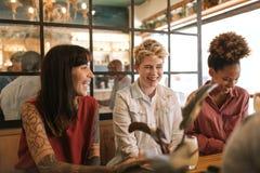 Усмехаясь молодые женские друзья говоря совместно в ультрамодном бистро Стоковые Фото